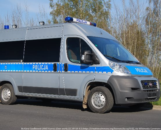 Policja Tarnów: Sarna na drodze przyczyną dachowania audi